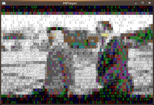 terminal-video_4